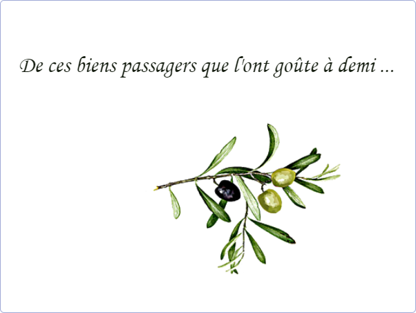 Plaque funéraire Photo dessin olives,oliviers,hommage